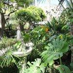 Kleines Gartenparadies hinten beim Hotel.