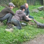 The boys help Tim feed the otters