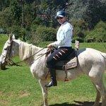 passeio a cavalo no hotel
