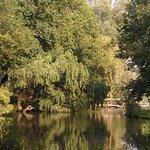 Vondelpark pond