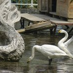 Bizhou Park