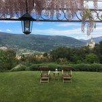 Wisteria over suite terrace