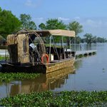 Our airboat chariot awaits!
