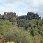 View of Montefollonico from La Chiusa.