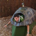 Έγινα χελώνα!