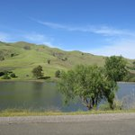 Ed Levin Country Park (Hiking, Horse Riding) Milpitas, CA