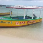 Andy's glass bottom boat tours... What a wonderful experience. Very knowledgeable and profession
