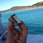 Ozi Lamington, blue water, clear sky, untouched island. Aaah love it!