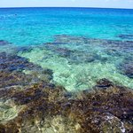there is no beach but beautiful coral reef