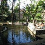 Garden Club Terrace