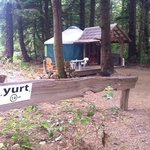 Yurt 14 - nice and private tucked a bit away from the other yurts