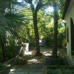 Villaggio Sayonara Club: viali interni nel verde, tra le stanze e gli appartamenti..