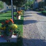 part of garden of Casa Portagioia, Tuscany