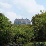 View of Sigiriya Rock from hotel pool