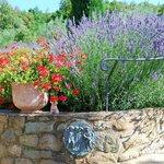 Color. Everywhere something wonderful to enjoy, Tuscany