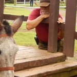Buzzy Sproat, owner Kalaupapa Mule Tour and ultimate mule whisperer