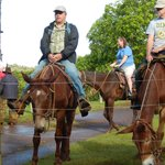 Mule conference to determine line order
