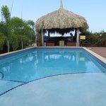 Het zwembad met loungeplek
