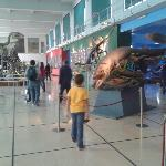 """Photo of Museo Argentino de Ciencias Naturales """"Bernardino Rivadavia"""" taken with TripAdvisor Cit"""
