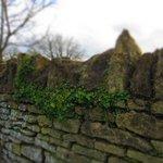 The Famous Cotswolds Limestone