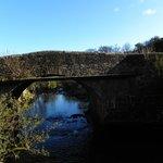 The bridge next to the garden