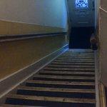 attenti alle scale
