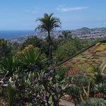 Botanical Gardens Madeira