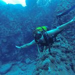 Mergulho é Vida