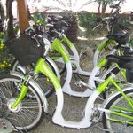 Les vélos pour les clients