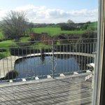 Vista desde el living de un estanque frente al deck