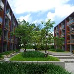 landscaped courtyard between two blocks