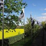 Fondation Beyeler Gray Flags