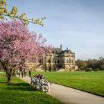 Blick auf das Palais im Großen Garten