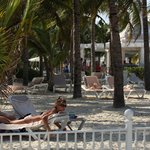 The loungers on the enclosed beach area