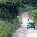Road to Kapievi