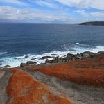 From Remarkable Rocks looking to Admirals Arch