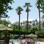 Main pool and spa
