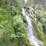A small part of the waterfall
