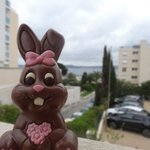 A great view from the balcony of our room.  Even our Easter travel bunny liked it.,