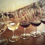 Wine tasting at Asara