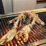 homard grillé au feu de bois
