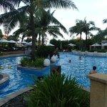 Free form swimming pool
