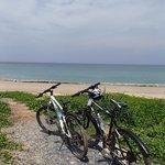 Bikes free to use