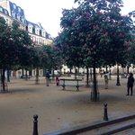 piazza dauphine