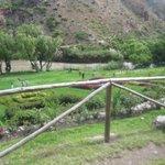 Tunupa back lawn down to roaring Urubamba River