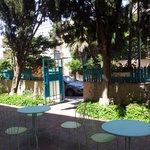 spring 2014-courtyard