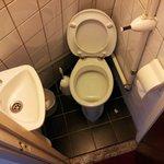 The giant toilet