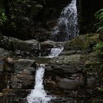 Waterfalls On Property
