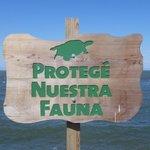Lac Managua