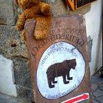 Bear Museum